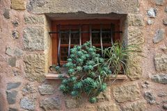 Window in an old house. With flower Stock Images