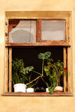 Window of old house. With flowerpots and shoes Royalty Free Stock Image
