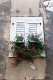 Window at an old house with flowers Royalty Free Stock Photo