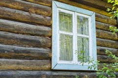 Window of the old house. The window in a wall of the old house from a tree royalty free stock photography