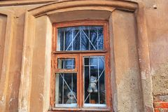 Window in an old house. Unusual window decorated with old soft toys royalty free stock photo
