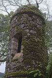 The window in old tower. Stones are overgrown by  moss. Royalty Free Stock Image