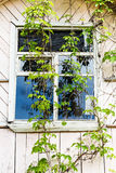 Window of old wooden country house Royalty Free Stock Photos