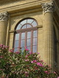 Window and oleander tree at Theatre Politeama in Palermo,Sicily. Vertical photo of window with oleander on Opera house Garibaldi Politeama in Palermo,Sicily Royalty Free Stock Image