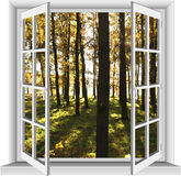 Window overlooking the forest. Stock Images
