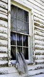 Window of the Past. A curtain slips through the broken window of an abandoned home near Blenheim, New York Royalty Free Stock Photos