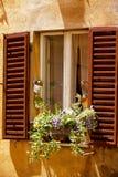 Window Perugia Stock Photo