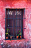 Window and Pink wall Stock Photography