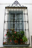 Window with plants and mediterranean bars. Lightblue grey window with pink flower plants and mediterranean bars Stock Images