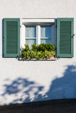 Window and plants simple Stock Images