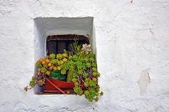 Window with a pot in the Alpujarras Stock Images