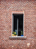 Window with potted flowers on the red brick wall. Architectural element. Vertical composition Royalty Free Stock Images