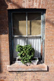 Window with potted plant Stock Photography