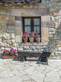 Window with potted plants Stock Photos