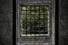 Window of Prague Stock Image