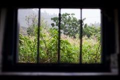 Window of prison Stock Image