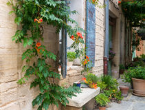 Window in the Provence. Stock Images