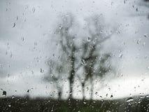 Window rain drops Royalty Free Stock Photo
