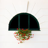 Window and red flower Royalty Free Stock Photos