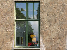 Window reflecting outdoors Stock Images