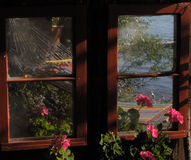 Window Reflection. This picture was taken near the shore of Whitefish Lake in NW Montana and shows a reflection of flowers and the lake Stock Images
