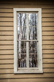 Window Reflects Spooky Swamp Royalty Free Stock Photography