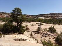 Window Rock Trail Stock Photo