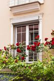 Window with roses Stock Photos