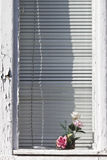 Window and roses Royalty Free Stock Photos