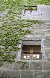 Window with rural grass. Detail of an old window in a facade, rural and classic Royalty Free Stock Images