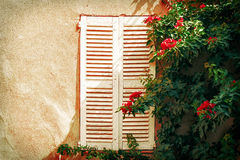 Window from Saint Tropez. France. Window with tree from Saint Tropez Royalty Free Stock Images