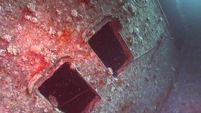 Window in Salem Express shipwrecks underwater in the Red Sea in Egypt. stock footage