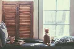 Window seat. Warm and cozy window seat with cushions and a opened book, light through vintage shutters, rustic style home decor Royalty Free Stock Photo