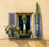 Window with shutters Royalty Free Stock Image