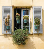 Window with shutters. Traditional French window with shutters in Nice, France Royalty Free Stock Photography