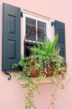 Window, Shutters and Flowers. Pink house with black shutters and a window box of ivy, ferns and purple flowers Stock Photo