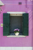 Window with shutters in a pink wall Stock Photography