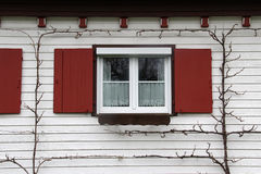Window. With shutters and  sills Stock Images