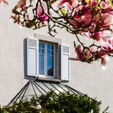 Window with shutters on the wall of house, view from the garden Stock Image
