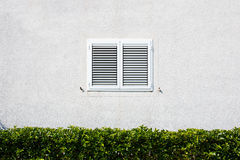 Window with shutters at the white wall. Stock Image