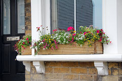 Window sill flower box Stock Photos