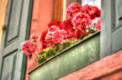 Window sill flower box Stock Photo