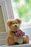 Window sill teddy bear Royalty Free Stock Photo
