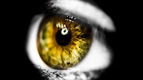 The window of the soul. Some people say that the eye is the soul of the window Royalty Free Stock Photo