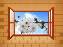 Window with spring blossom. Illustration Stock Photo