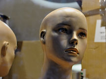 Window store mannequin Stock Photography