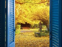 Window to fall garden. Room with open blue window shutters to - fall garden with yellow tree leaves and bench Stock Photo