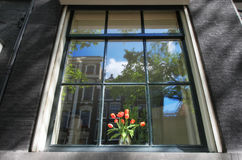 Window to Holland. Reflection in the window in Amsterdam, Netherlands Royalty Free Stock Images