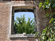 Window to nature through the devastation Royalty Free Stock Image