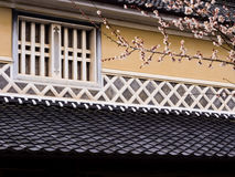 Window of traditional Japanese house with cherry blossoms Royalty Free Stock Image
